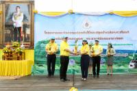 Picture of The  MOF Afforestation Project  and Forest planting at Chonburi